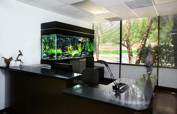20 Modern Aquarium Design for Every Interior  House Design And Decor