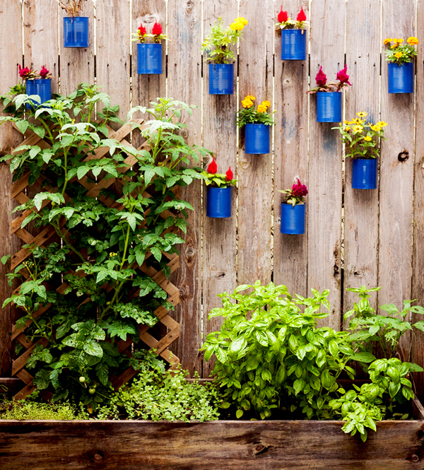 DIY Hanging Fence Garden in Backyard