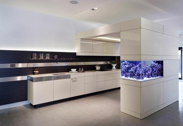 Modern Aquarium Kitchen Cabinet