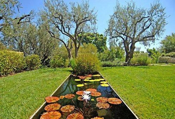 Top 12 Backyard Celebrity Most Riveting House Design And