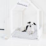 Modern DIY Dog Houses