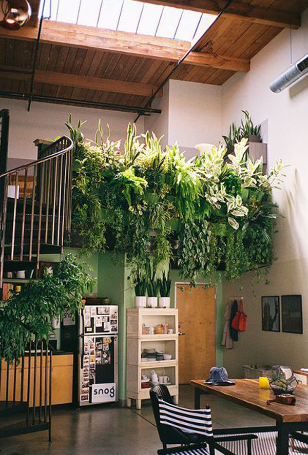 Indoor Vertical Garden Decorations