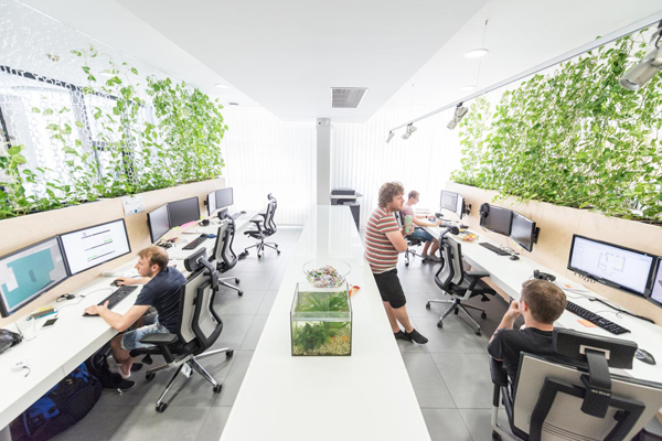 Modern Office Interior With Indoor Plants House Design And Decor
