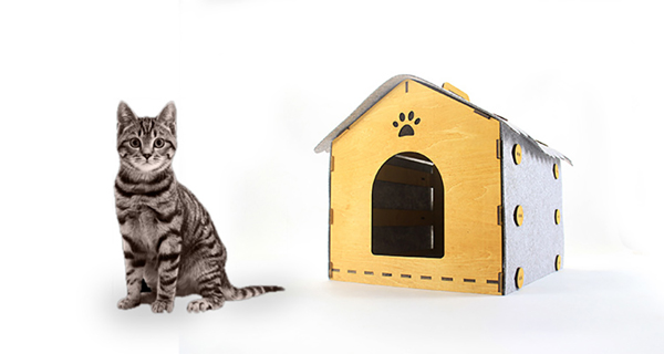 Indoor Cat House With Easy Take Anywhere