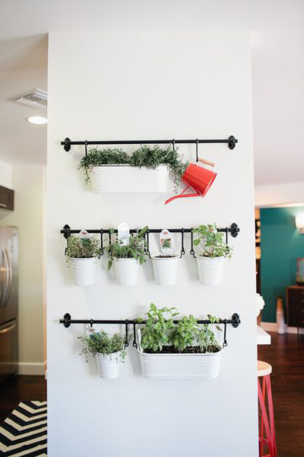 Diy hanging herb garden wall Indoor living wall herb garden