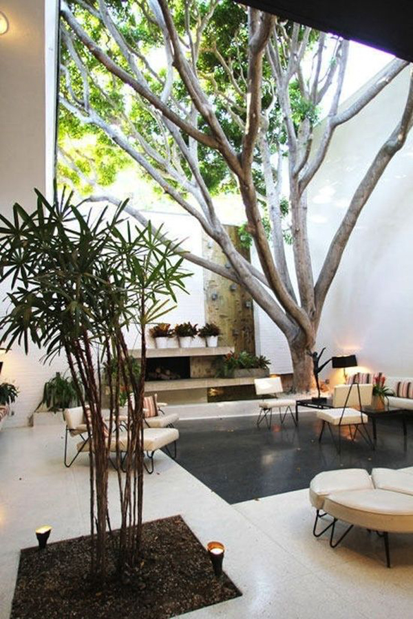 5 easy feng shui tips for your home house design and decor for Indoor nature design challenge