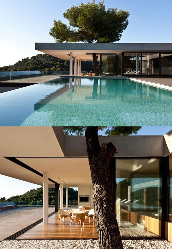 Save the tree 15 unique houses with trees inside house for Inside amazing homes