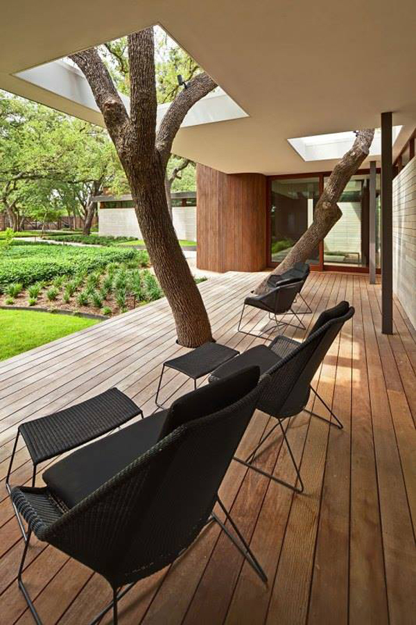 Save the Tree: 15 Unique Houses with Trees Inside