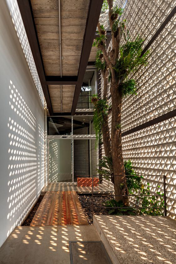Indoor Tree Inside House Design