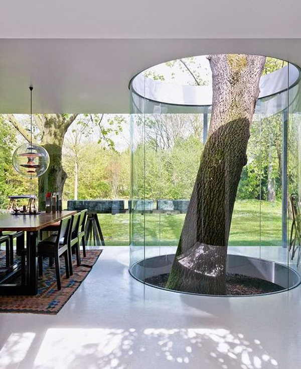Save the Tree: 15 Unique Houses with Trees Inside | House Design And ...