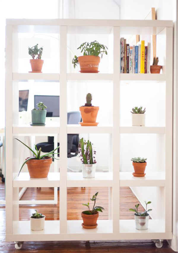 15 Natural Plant Wall Ideas For Room Dividers House