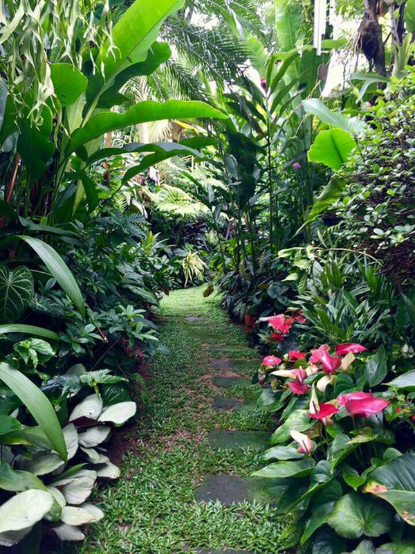 22 Shady And Fresh Gardens To Urban Jungle Ideas | House ... on Tropical Patio Ideas id=58747
