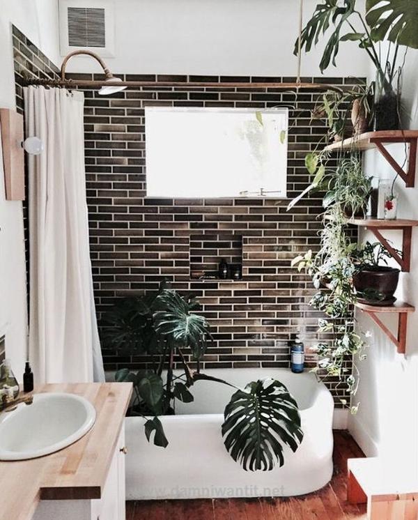 Tropical Indoor Bathroom Garden Design