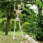 Best 10 Crazy and Funny Halloween Decor Ideas