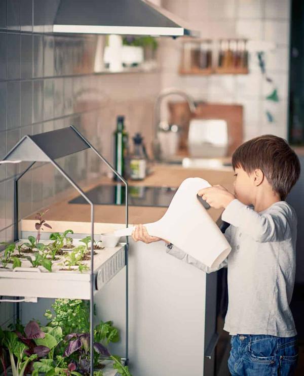 Modern and Inovative Ways to Indoor Gardening Ideas
