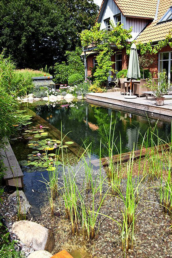 30 Natural Pond And Swimming Pool Designs For Relaxing |