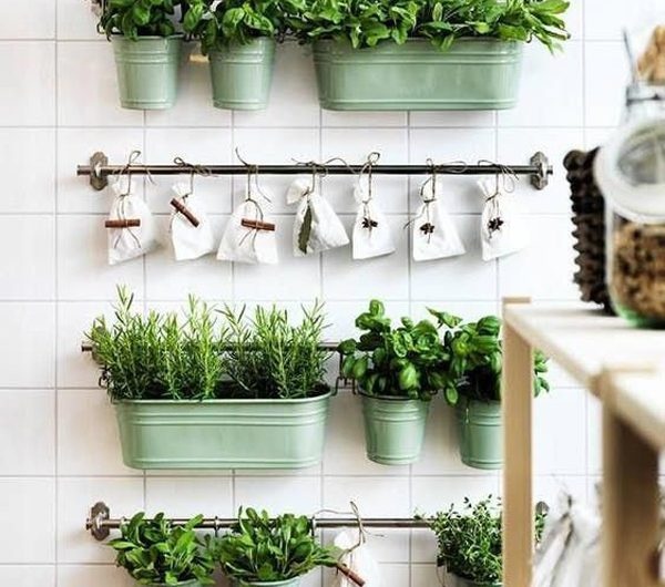 7 Easy Ways To Growing Indoor Herb Gardens