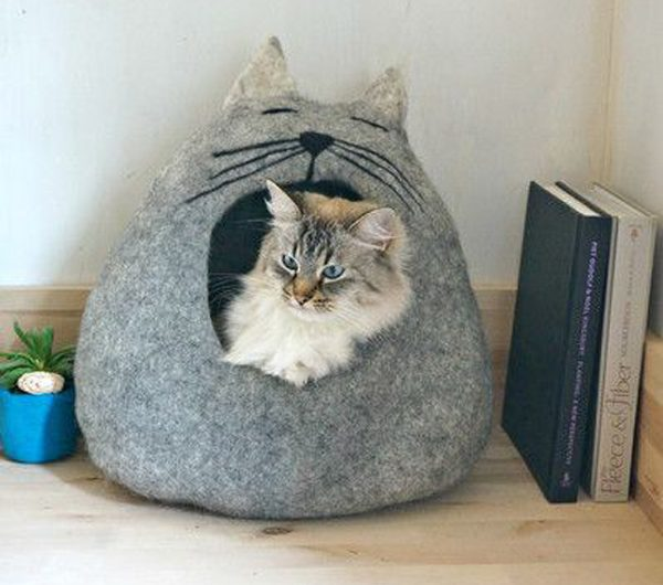 25 Fun Cat Bed Ideas With Shape Of Unique