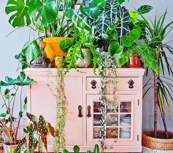 30 Modern Indoor Garden Ideas For This Summer