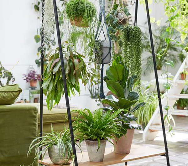 10 Nature Inspired Room Dividers With Plants Decor
