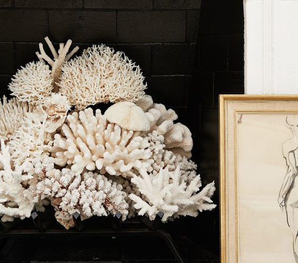 25 Beautiful Sea Coral Decor Like A Holiday