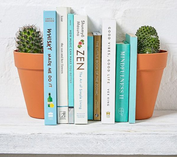 20 Trendy Planter Bookends To Bring Style At Home
