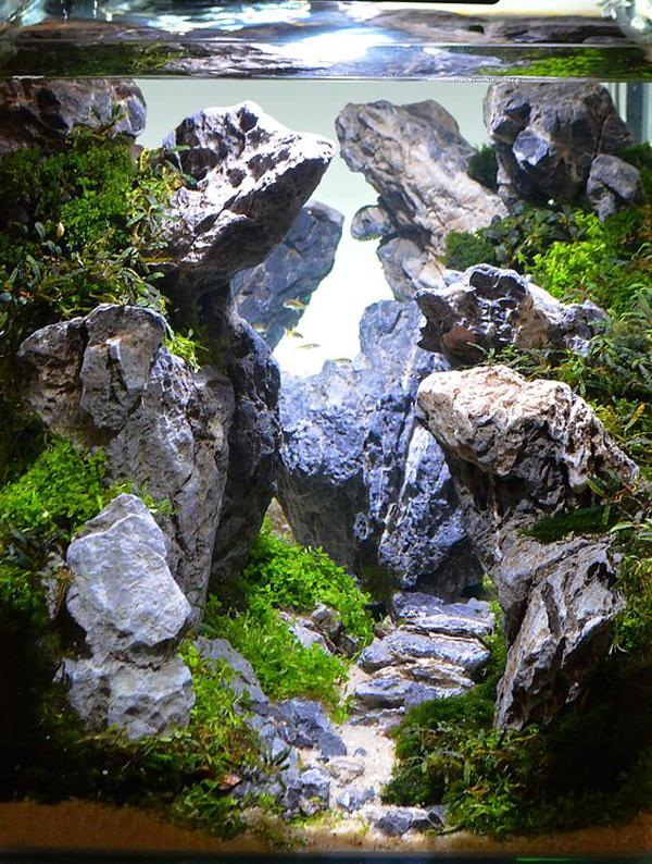 mountain-aquascape-designs