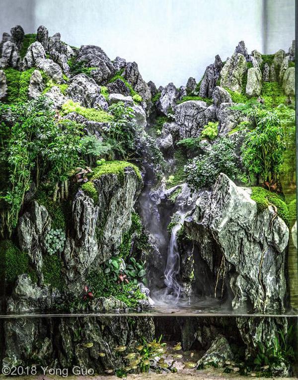 Mountain Aquascape Gardener Design