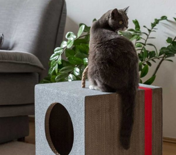 Mioou: Three Cat Furniture Design That Must Have Animal Lover