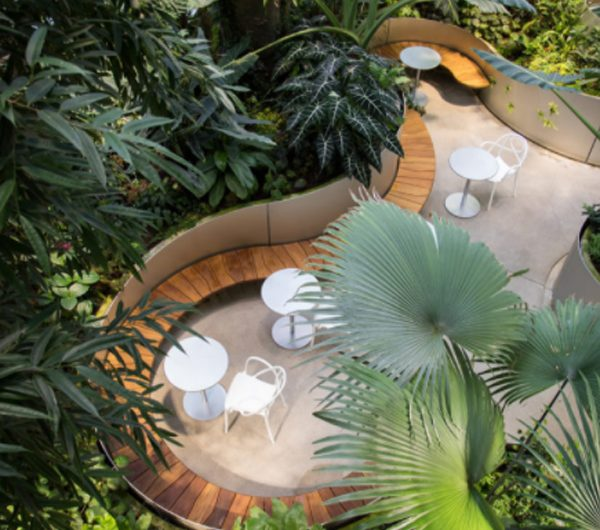 The Spheres: Nature Workplace That Home For 40,000 Plants Across 700 Species