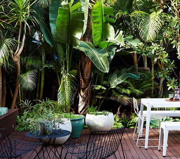 7 Best Garden Concepts That You Must Know