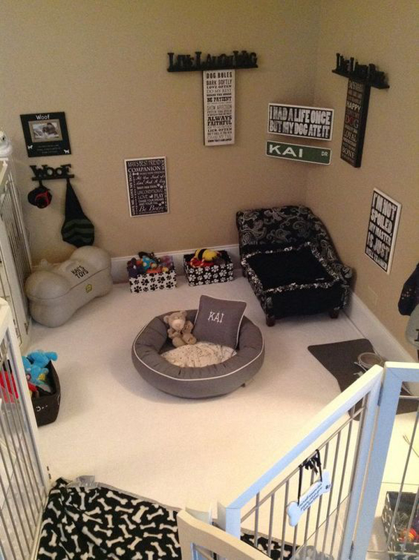 amazing-dog-room-and-play-ideas
