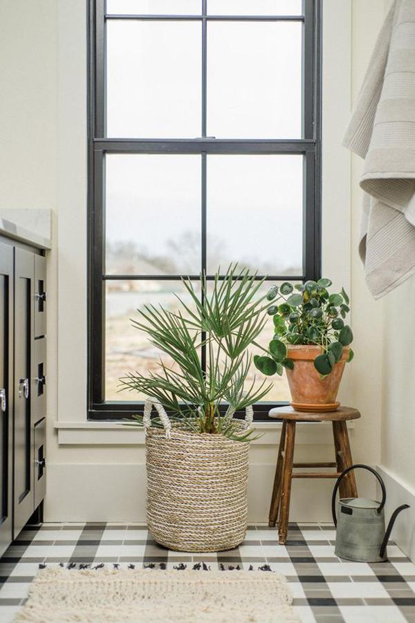 favorite-bathroom-plants