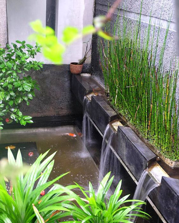 cool-fish-pond-design-for-small-area