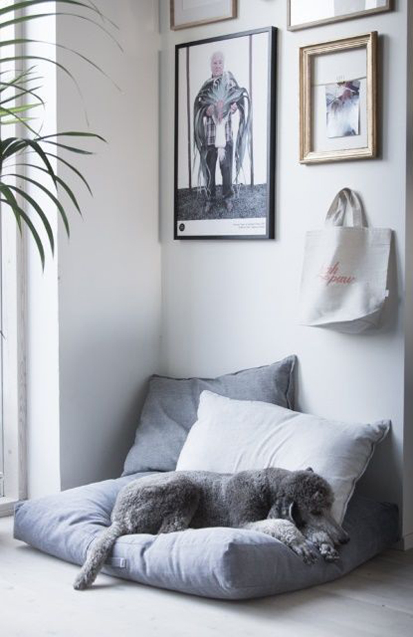 cozy-dog-daybed-design