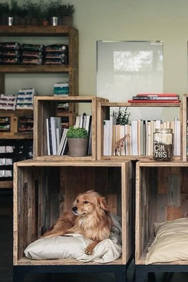 diy-dog-crates-with-bookshelves