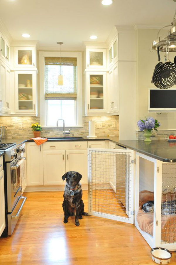 dog-crates-and-kennel-in-the-kitchen