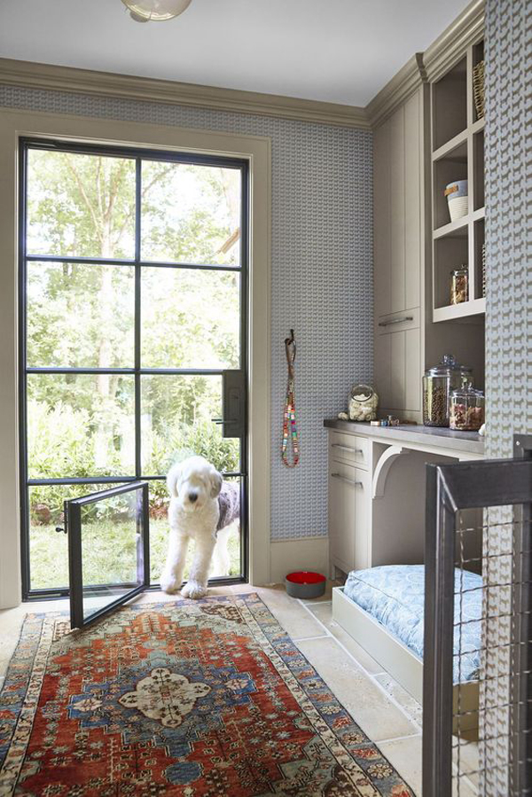 dog-space-ideas-with-glass-door