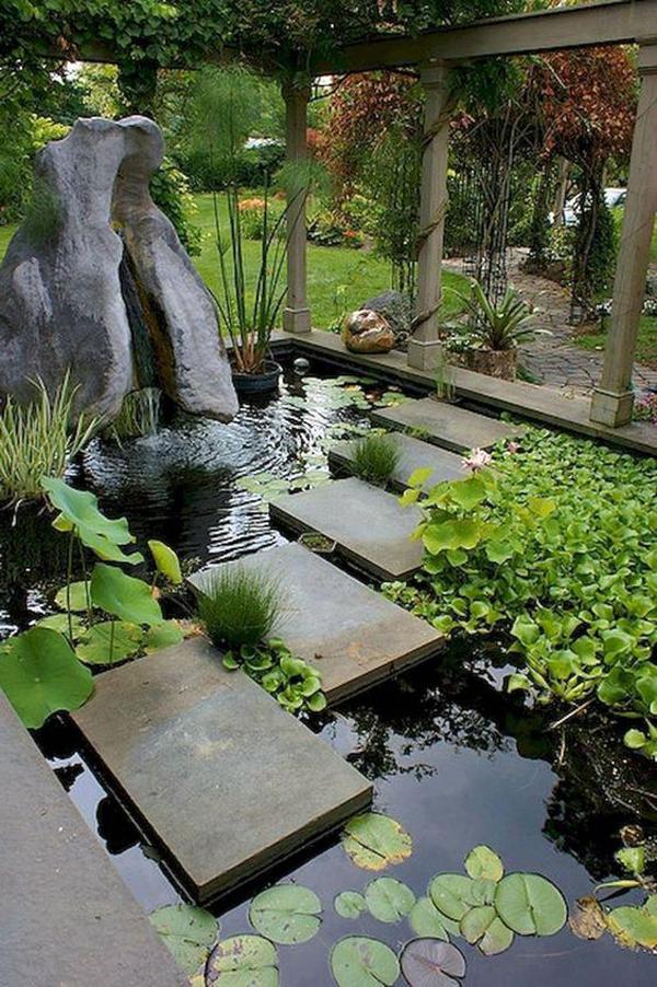 nature-fish-pond-landscapes
