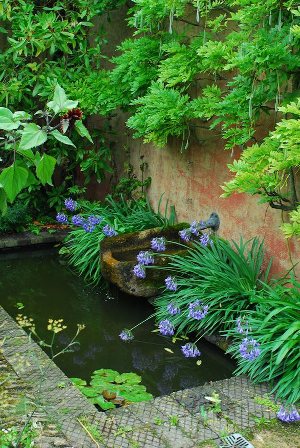 nature-pond-design-surrounded-by-plan