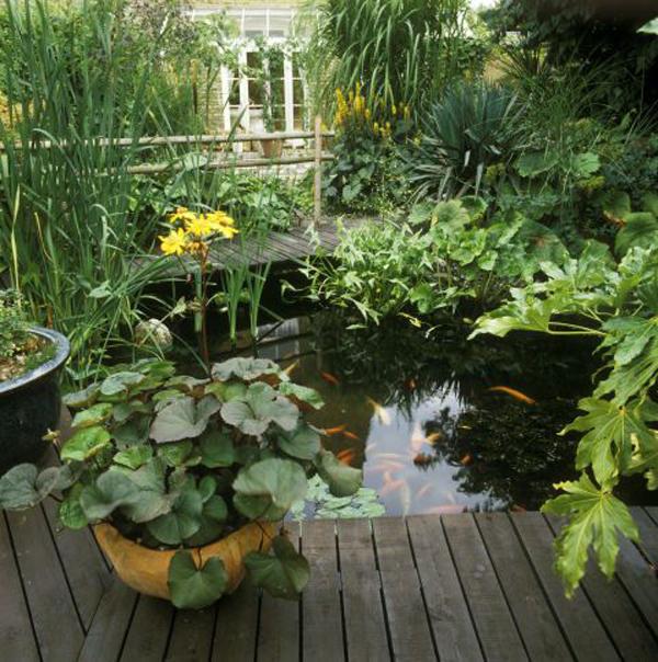 nature-small-deck-pond-design