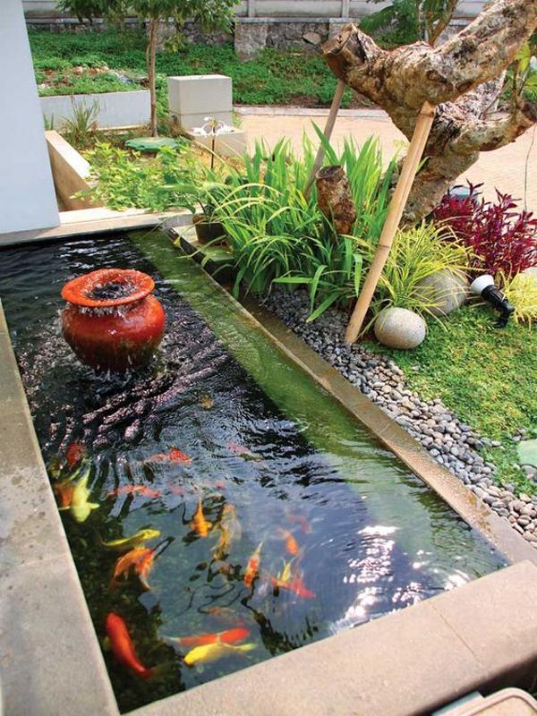 trendy-small-fish-pond-decor