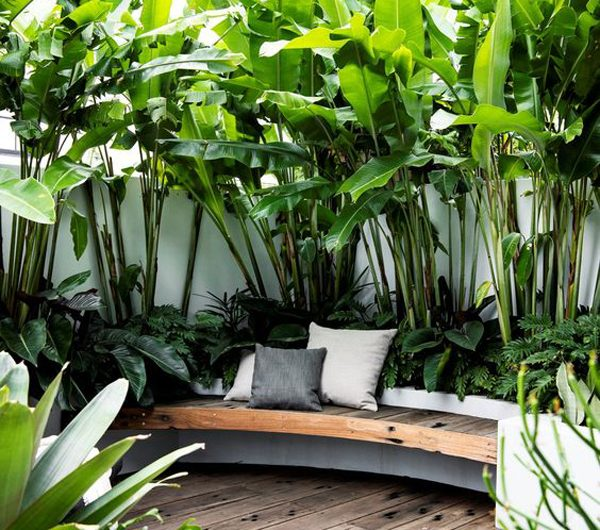 10 Trendy Tropical Garden Ideas To Relax In Summer