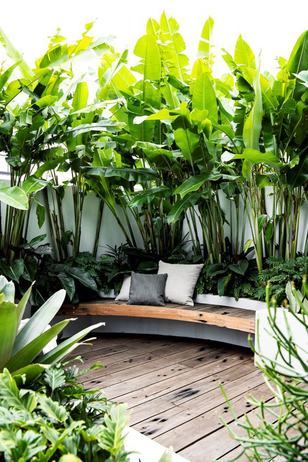 tropical-garden-with-seating-area