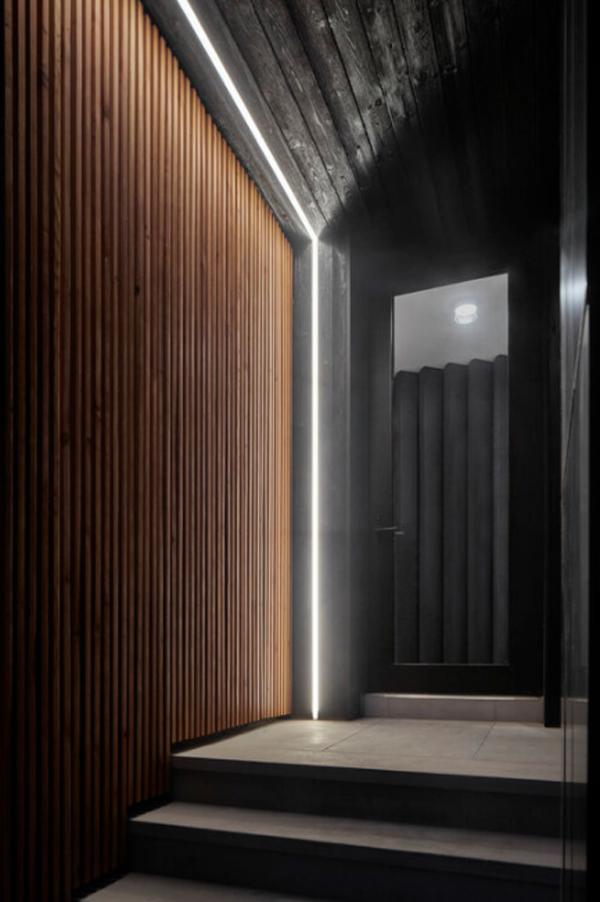 cool-wood-front-door-in-black