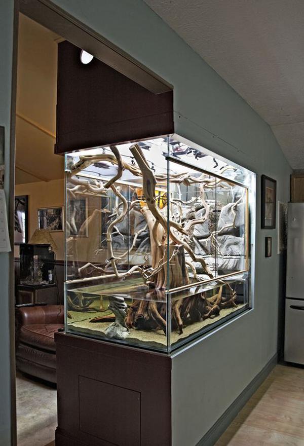 amazing-aquarium-wall-divider-with-nature-inspired