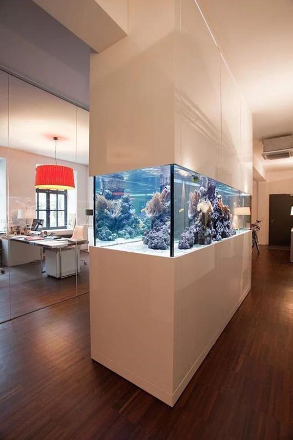 aquarium-wall-divider-design
