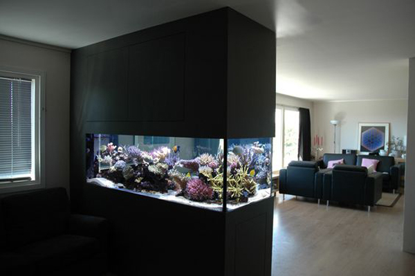 cool-double-sided-aquarium-in-black