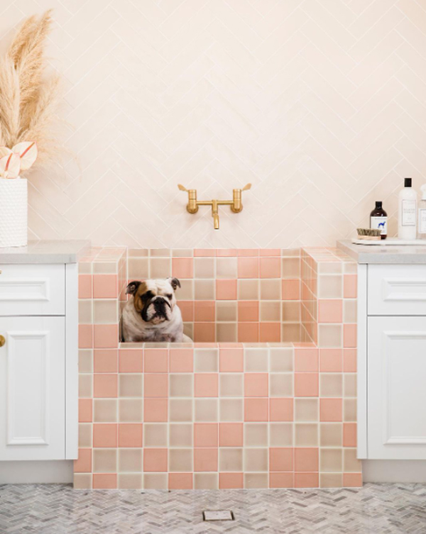 cute-pink-dog-wash-stations