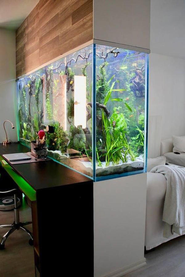 double-sided-aquarium-for-functional-space